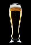 Glass of beer isolated over a black background Royalty Free Stock Images