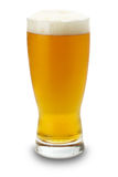 Glass of beer isolated on the white background Stock Photos