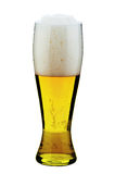 Glass of beer. A glass of light beer with foam Stock Photos