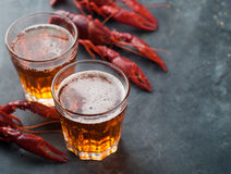 Glass of beer and lobster Stock Image