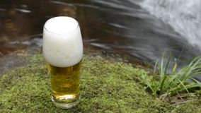 Glass beer stock video footage