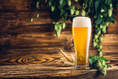 Glass of beer on old wooden table Royalty Free Stock Image