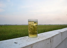 Glass beer Royalty Free Stock Photography