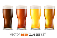 Glass beer Stock Images