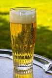A glass of beer silver on a tray Royalty Free Stock Photo