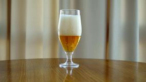 Glass of beer on the table. A glass of light beer on the table stock footage