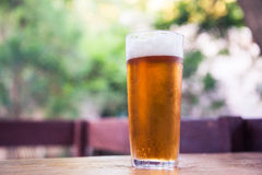 Glass of beer. On the terrace Stock Image