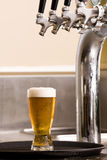 Glass of beer on a tray Stock Images