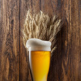 Glass of beer with wheat on wood royalty free stock images