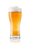 Glass of beer on white background. Royalty Free Stock Photo