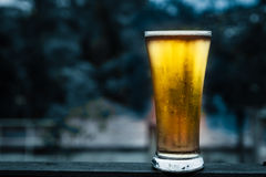 Glass beer Royalty Free Stock Images