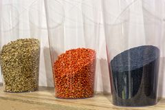 Glass behållare med frö av jordbruks- skördar royaltyfri foto