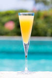 Glass of Bellini Royalty Free Stock Photography