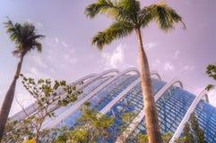 Glass bilaga, trädgårdar vid fjärden, Singapore Arkivbild