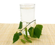 Glass of birch juice, water drops and birch branch Stock Photo