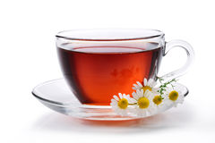 Glass of black tea. Isolated on white background Stock Image