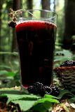 Glass of blackberry juice. Blackberries from the forest Stock Photos