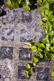 Glass Block Sidewalk Royalty Free Stock Image