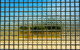 Glass block window Stock Photos