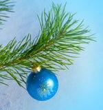 Glass blue ball on christmas tree Royalty Free Stock Photography