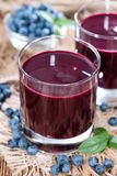 Glass with Blueberry Juice Royalty Free Stock Photo