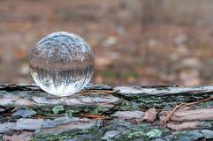 Glass boll eller orb för fortunetelling som soothsaying arkivfoto