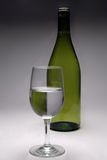 A glass and a bottle. Studio shot stock image