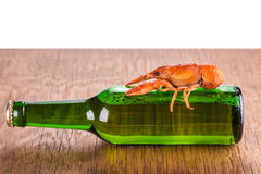 Glass bottle of beer and crayfish Royalty Free Stock Photo