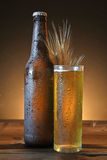 Glass and bottle of cold beer Stock Photos