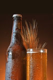 Glass and bottle of cold beer Royalty Free Stock Images