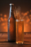 Glass and bottle of cold beer Royalty Free Stock Image