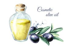 Glass bottle with cosmetic olive oil. Watercolor hand drawn illustration, isolated on white background. Glass bottle with cosmetic olive oil. Watercolor hand vector illustration