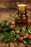 Glass bottle of essential oil of medicinal berries Royalty Free Stock Image