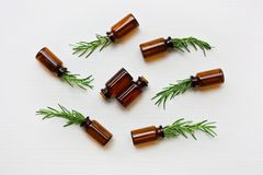 Glass bottle of essential oil with rosemary. Top view royalty free stock photo