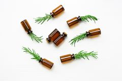 Glass bottle of essential oil with rosemary. Top view royalty free stock photos