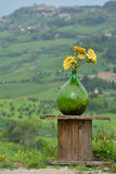Glass bottle with flowers Royalty Free Stock Photos