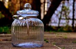 Glass Bottle, Glass, Bottle, Water Royalty Free Stock Photo