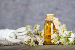Glass bottle of horse chestnut oil extract. Closeup royalty free stock photo