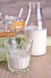Glass and bottle of milk Royalty Free Stock Photos