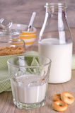 Glass and bottle of milk Stock Images