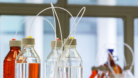 Glass bottle with plastic hose. Close up clear and amber color bottle with plastic hose for High performance liquid chromatography - HPLC Royalty Free Stock Image