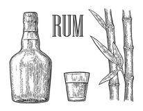 Glass and bottle of rum with sugar cane. Royalty Free Stock Photos