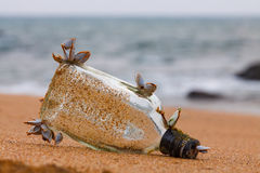 Glass bottle in sand with shellfish. Olf glass bottle in sand with small shellfishes on Goa beach stock photos