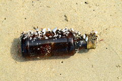 Glass bottle with sea shells on the beach. Empty brown glass bottle with sea shells abandoned on the beach Royalty Free Stock Photo