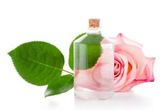 Glass bottle with transparent liquid, pink rose and green leaf Stock Photo