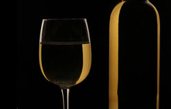 Glass and bottle of white wine Royalty Free Stock Photos