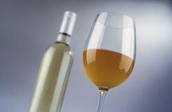 Glass and bottle of white wine Stock Photography