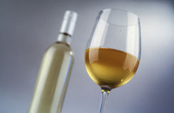 Glass and bottle of white wine Stock Images
