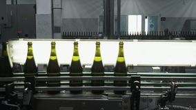 Glass bottles on the automatic conveyor line at the champagne or wine factory. Plant for bottling alcoholic beverages. Glass bottles on the automatic conveyor stock video footage