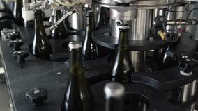 Glass bottles on the automatic conveyor line at the champagne or wine factory. Plant for bottling alcoholic beverages. Glass bottles on the automatic conveyor stock footage